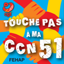 Badge ccn 51 redimensionne