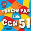 Badge ccn 51 redimensionne